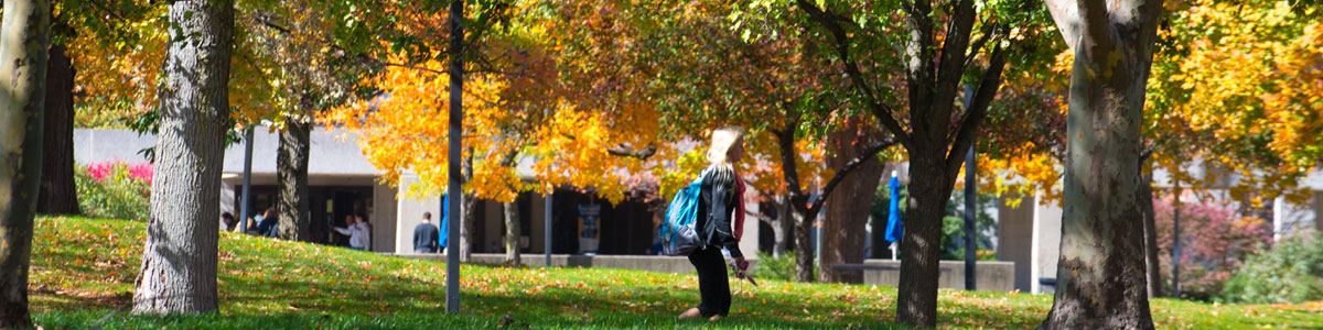 CML Library in the Fall